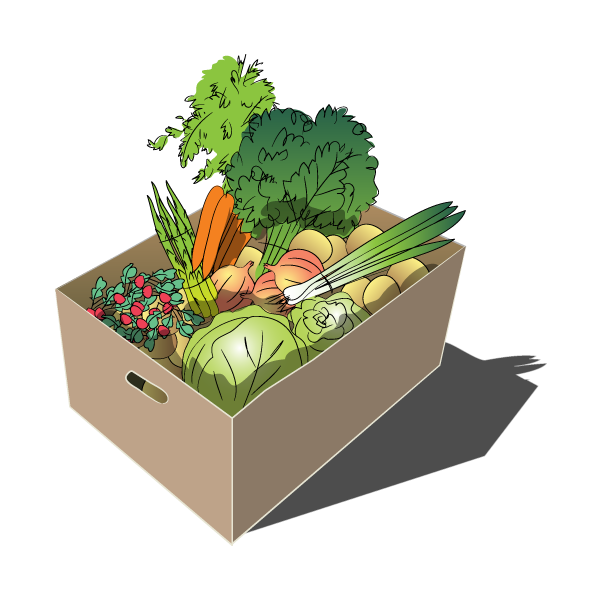 Seasonal Crop Box